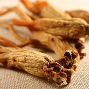 What Are the Cons and Pros of Red Ginseng