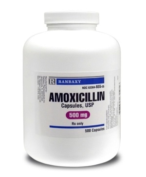 Ampicillin Indications to Use