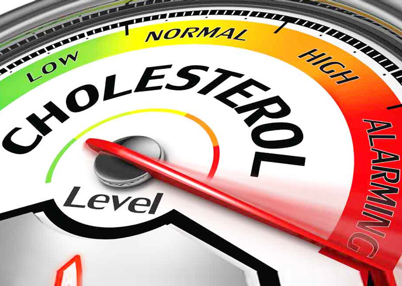 The-role and dangers of cholesterol